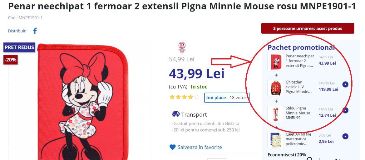Pachet promotional Pigna Minnie Mouse